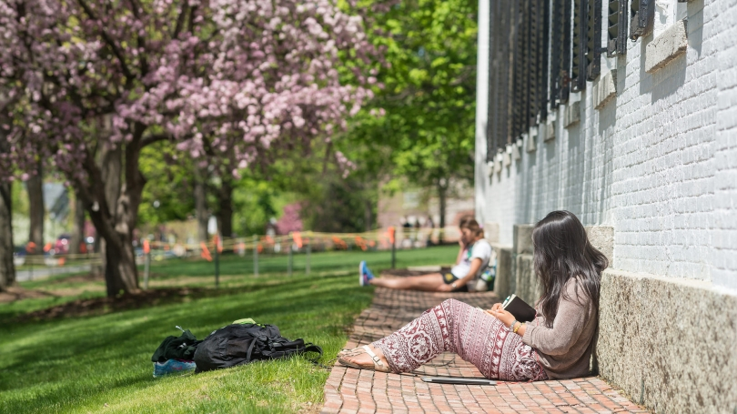 Students studying on the Dartmouth campus in Spring